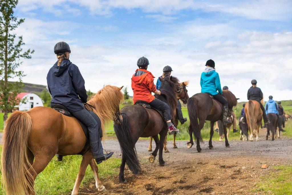 Horseback Ridding in Iceland
